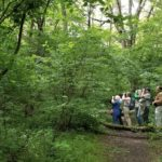 Birdwalk with Potomac Audubon Society