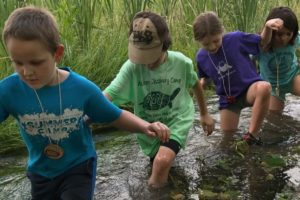 Camp kids wading in creek