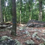Eidolon Nature Preserve