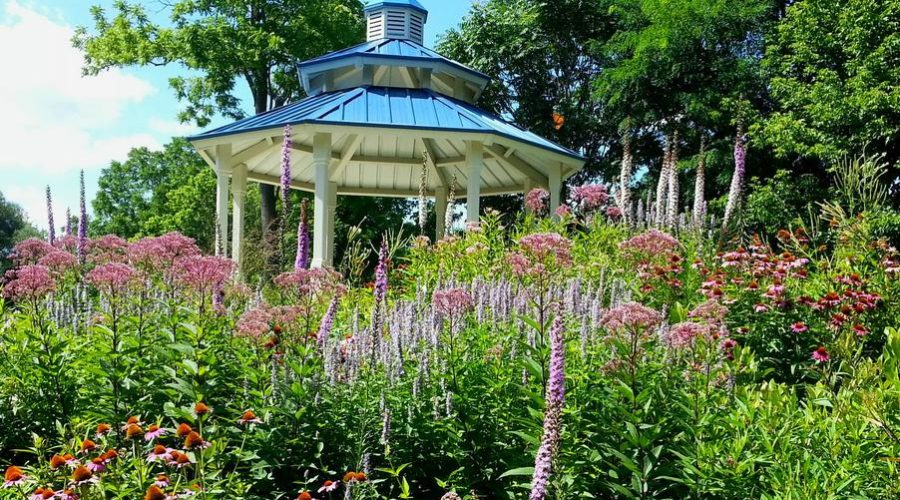 """""""Design Considerations – Functionality of Plants in a Garden"""""""
