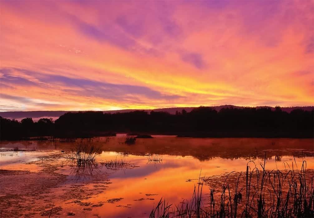 Sunset at Stauffer's Marsh by Will Herschberger