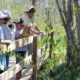 Stauffer's Marsh Nature Preserve Volunteer Workday