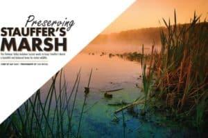 Jefferson Magazine Features Stauffer's Marsh Nature Preserve
