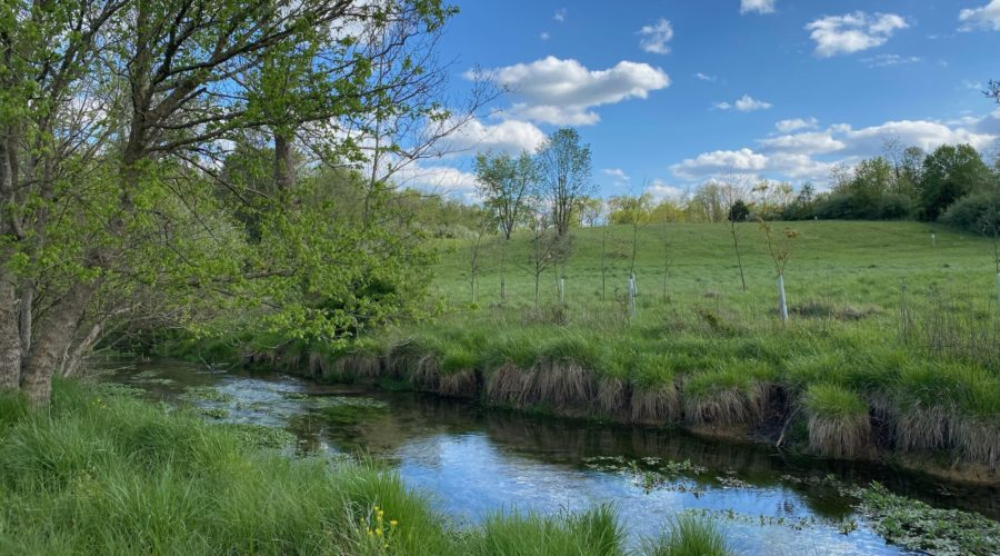 Land Donation Expands Cool Spring Preserve